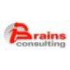 BRAINS CONSULTING