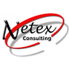 Netex Consulting